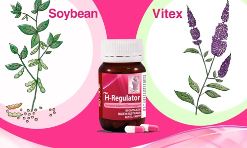 Sử dụng dịch chiết cây Vitex (Cây Trinh nữ Châu Âu): 1
