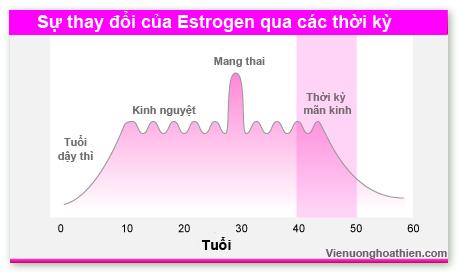Khi thiếu hụt lượng Estrogen trong cơ thể? 1