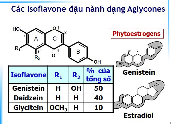 Iso-flavone đậu nành 1