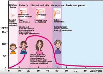 Cuộc sống tình dục thay đổi thế nào khi bạn già đi?