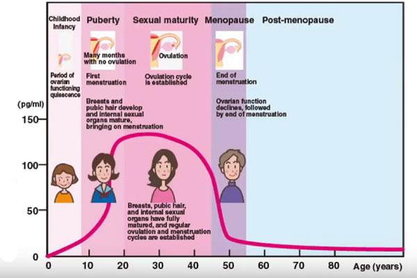 Thời kỳ mãn kinh và giảm estrogen 1